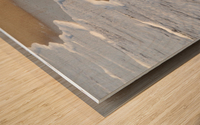 Sea Foam Wood print