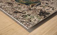 Denali Fox Wood print