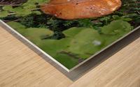 Bisquit Mushroom Wood print