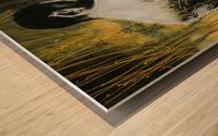 Profil Wood print