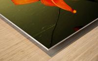 C (8) Wood print