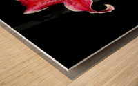 C (1) Wood print