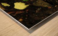 sofn-16FB61B2 Wood print