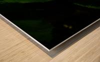 sofn-B03175AE Wood print