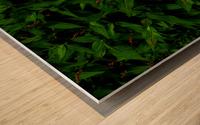 sofn-6D81AE31 Wood print