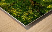 sofn-C1F96356 Wood print