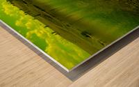 sofn-D8955C26 Wood print