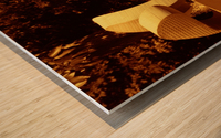 sofn-D845A477 Wood print