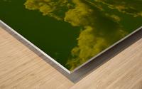 H (8) Wood print
