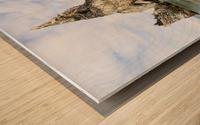 Praia da Ursa Wood print