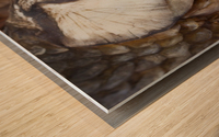 Carp no More Wood print