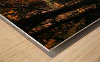 Forest 2_OSG Wood print