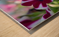 Pink Flowers Photograph Wood print