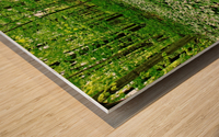 Trillium Woods VI Wood print