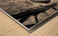 Straight Ahead - Droit Devant Wood print