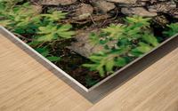 Roches Impression sur bois