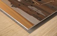 Phoenix Mars Lander Wood print