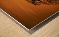 Baobab Sunset Wood print