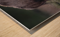 _49R0234 2 Wood print
