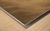 164A1810 Wood print