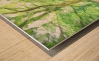 Park View Wood print