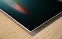 Life capsule Wood print