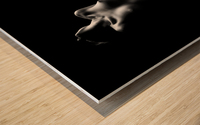 Nude woman bodyscape Wood print