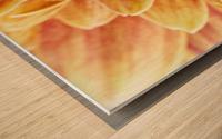 Golden Chrysanthemum Wood print