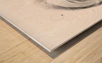 SRC Wood print