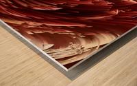 image3A6823_mirror9 Wood print