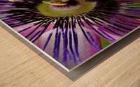Purple Passion Flower Wood print