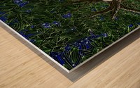 Lynx_Pesoak_Anik_Lafreniere Wood print
