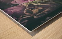 Bougainvillea Collage Wood print