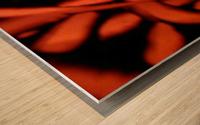 1542143674246_1542161562.62 Wood print