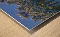 Invasion Wood print