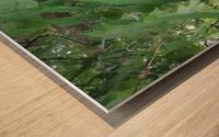 IMG_4893 Wood print