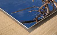 Beach Bum Wood print
