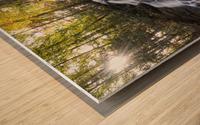 Trahlyta Waterfall Wood print