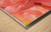 Pink pastel flower Wood print