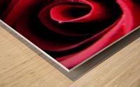 Pearly Petals Wood print