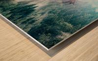 Antler Wood print