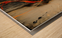 2841 - safe n sound Wood print