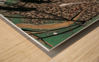 3090 - OD green Wood print