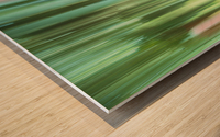 Moving Trees 04 Landscape 52-70 Wood print