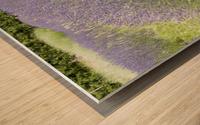 Lavender plants 1 Wood print