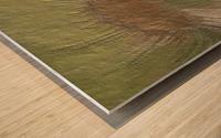 Acid etch Wood print