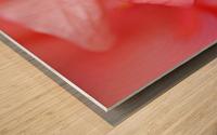 Double Peach Hibisicus Wood print