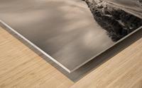 Halcyon Wood print