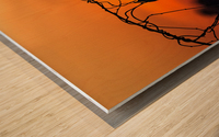 Vine Milkweed at Sunset Wood print