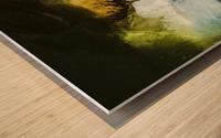 46CD6FA6 351F 4CAB B780 051ACF519992 Wood print